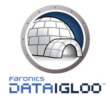 Data Igloo Logo