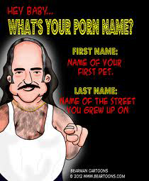 What's Your Porn Name?